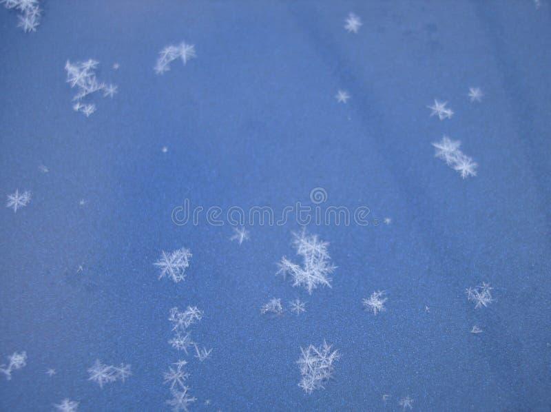 Flocos da neve foto de stock royalty free