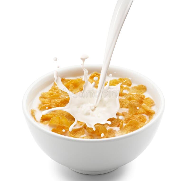 Flocos de milho com respingo do leite fotografia de stock