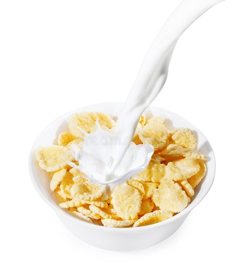 Flocos de milho com respingo do leite foto de stock