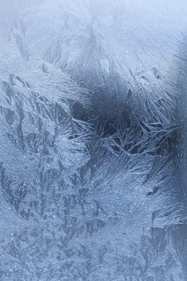 Flocos de neve do Natal isolados no fundo fotografia de stock royalty free