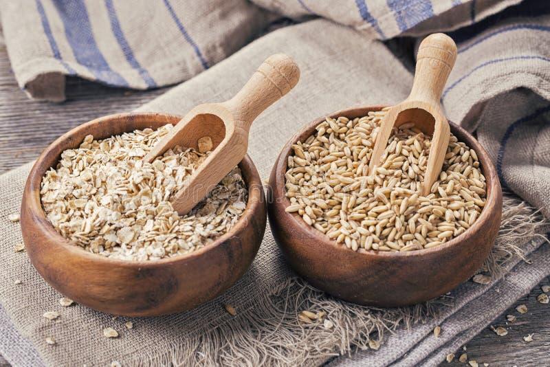 Flocos e sementes da aveia fotografia de stock royalty free