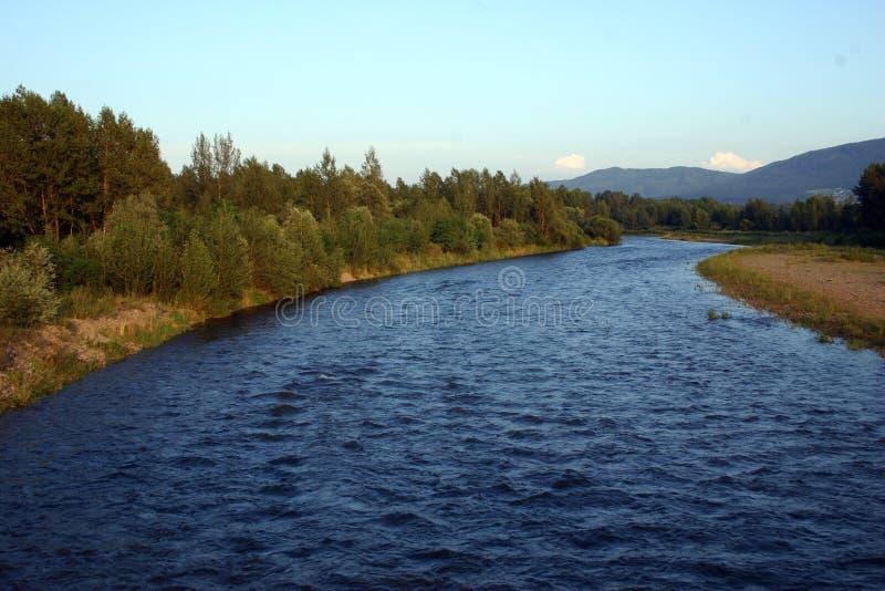 Download Flod arkivfoto. Bild av natur, oväsen, poland, oklarhet - 290668