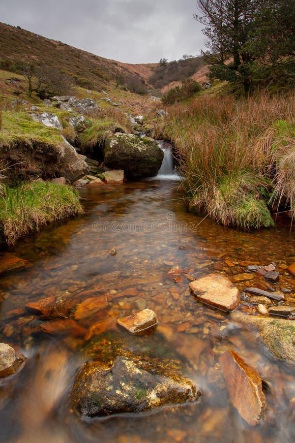 Flod av guld, Dartmoor nationalpark arkivbild