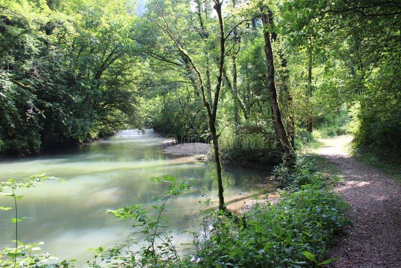 Flod bredvid en trai i Juraen, Frankrike royaltyfria bilder