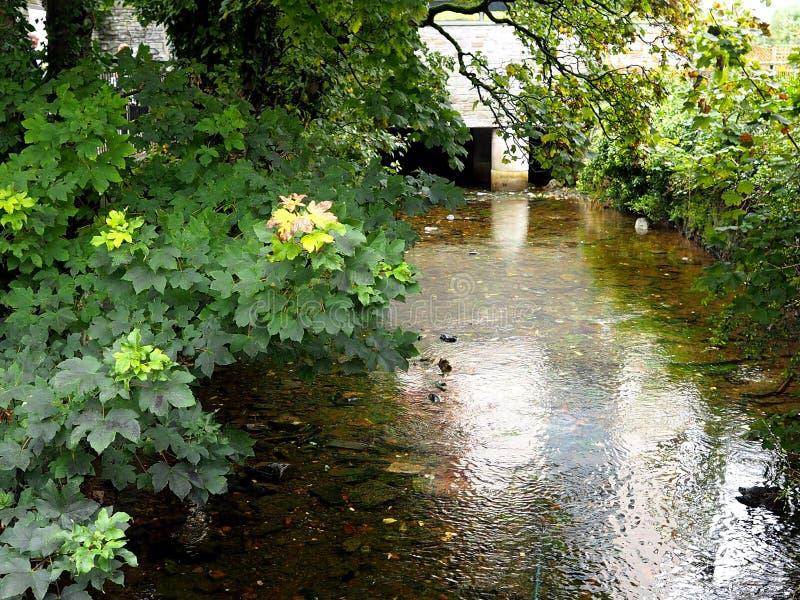 Flod Corrib i Galway Irland arkivfoton