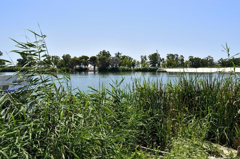 Flod Ebro, delta royaltyfri fotografi