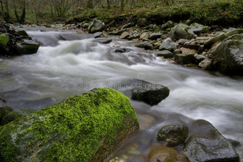 Flod efter regn fotografering för bildbyråer
