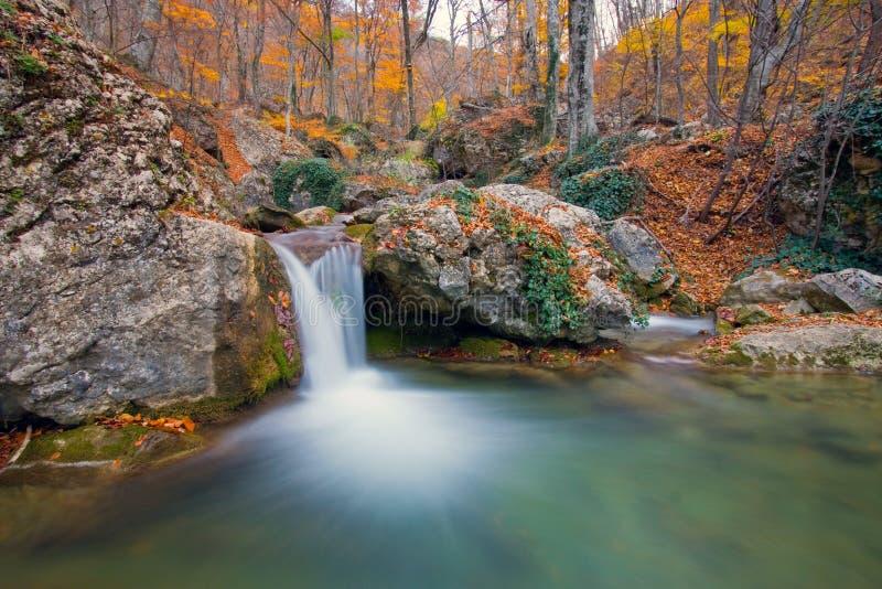 flod för höstskogberg arkivfoto