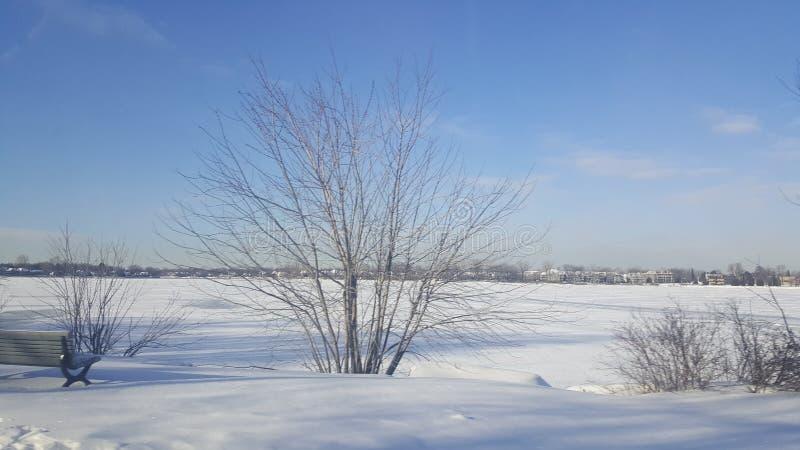 flod för slut för solig dag med is fotografering för bildbyråer