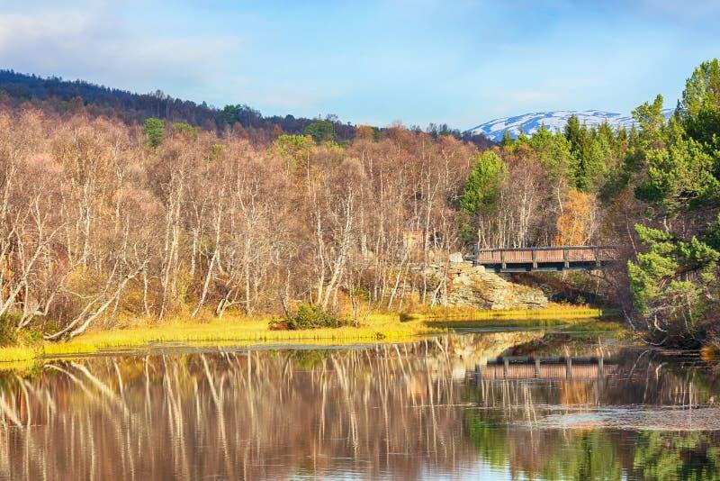Flod Festa, Norge arkivbilder