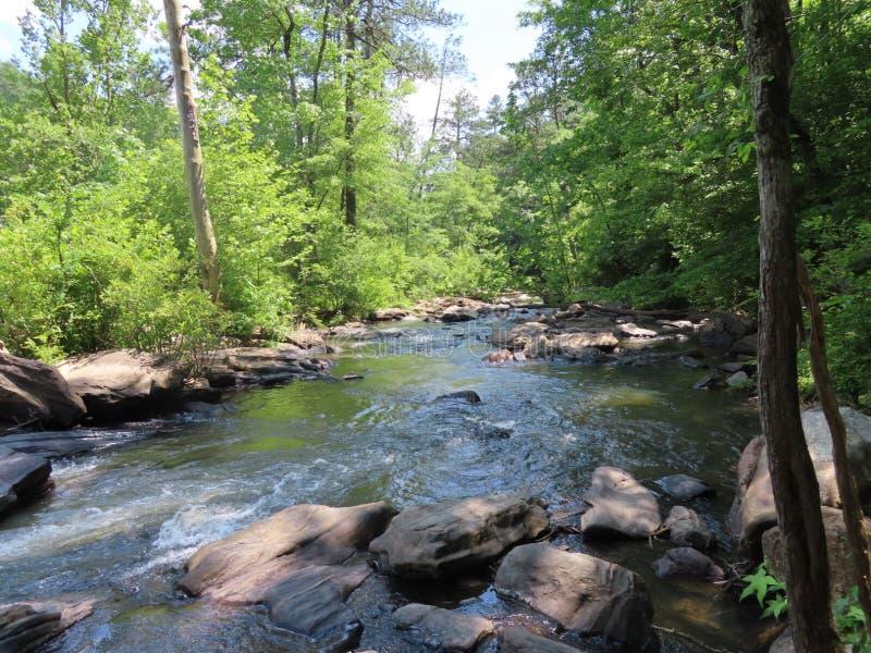 flod fortfarande arkivfoto