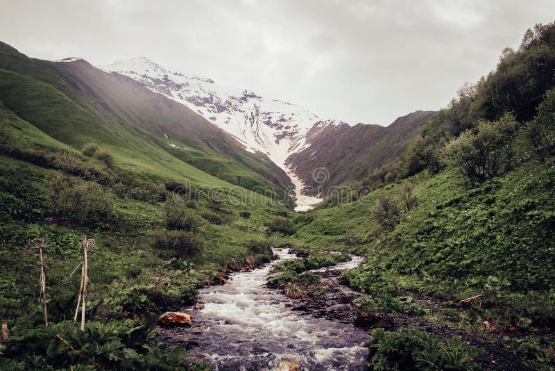 Is- flod i det Kaukasus berget och en glaci?r i Georgia royaltyfria foton