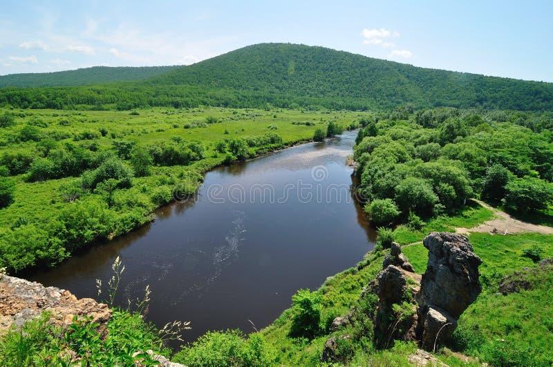 Flod i grässlätt royaltyfria foton