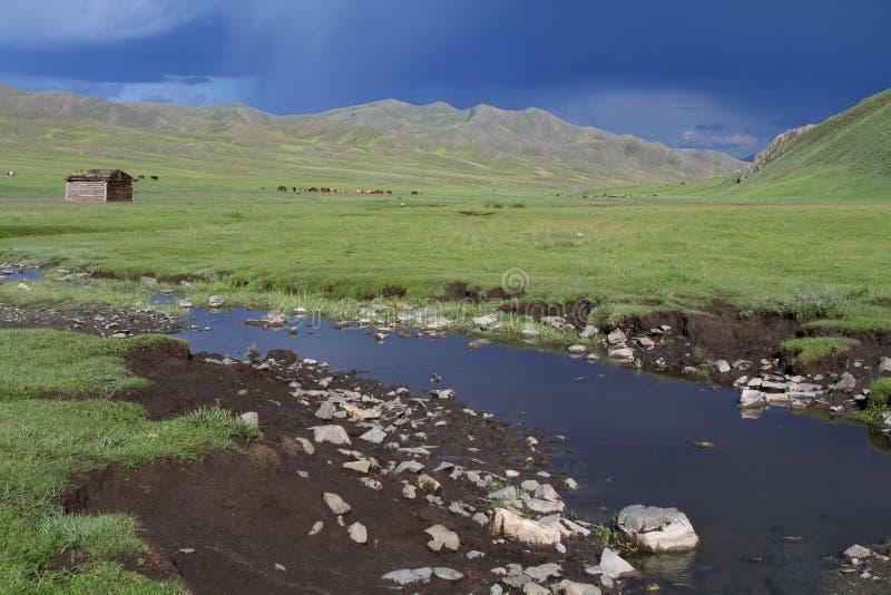 Flod i mongolianstäppen arkivbild