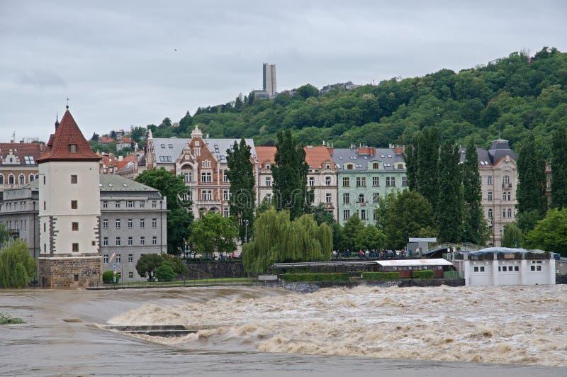 Flod i Prague royaltyfri bild