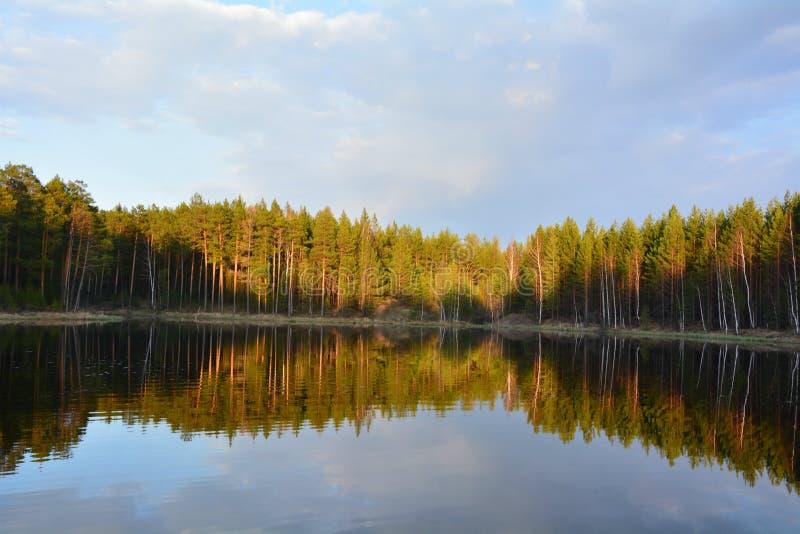 Flod i solnedgång royaltyfria foton