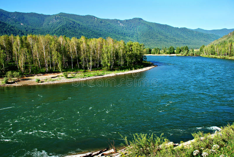 Flod Kucherla, Altai, Ryssland, löst landskap royaltyfri foto