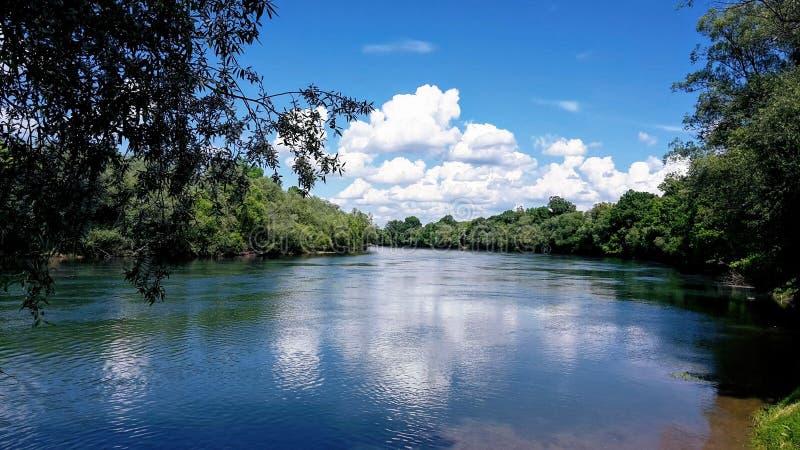 Flod Kupa i Kroatien under våren royaltyfria bilder
