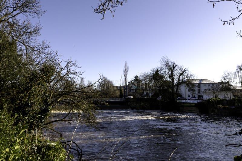 Flod Leam i vintern - pumprum/Jephson trädgårdar, kungliga Leamington Spa royaltyfria foton