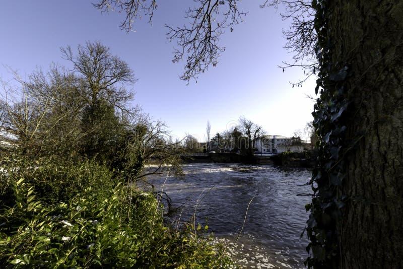 Flod Leam i vintern - pumprum/Jephson trädgårdar, kungliga Leamington Spa royaltyfri fotografi
