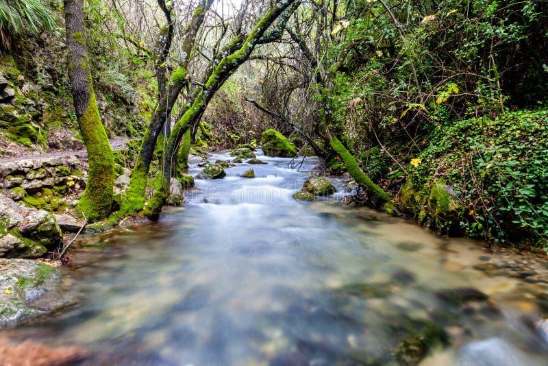 Flod Majaceite fotografering för bildbyråer