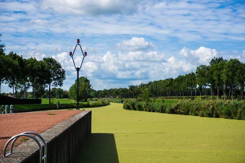 Flod med ett lager för gröna alger royaltyfri fotografi