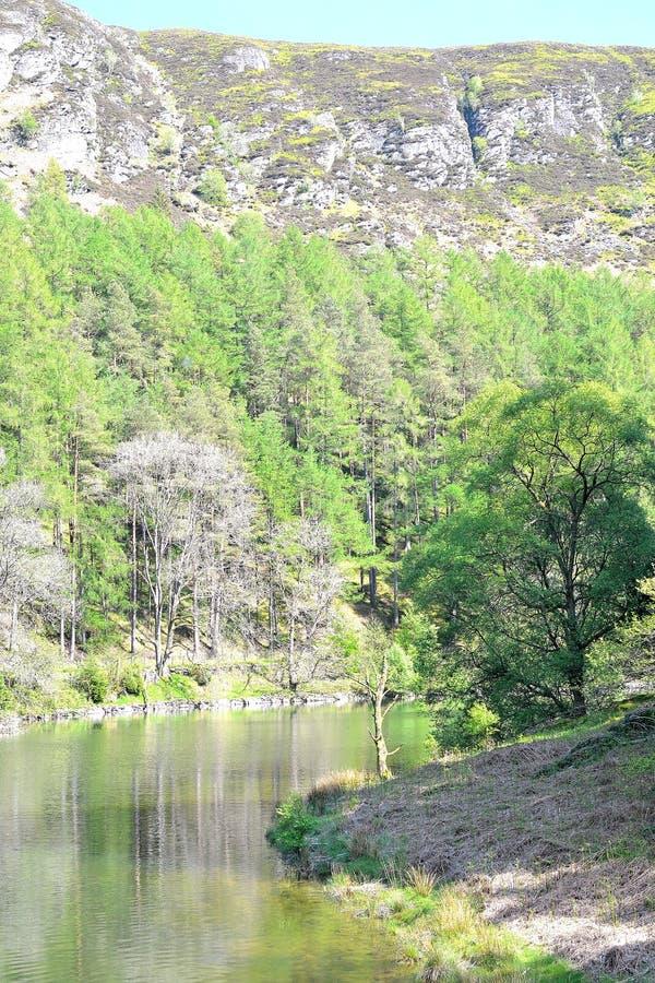 flod med reflexion i Elan Valley i Wales, UK royaltyfria bilder