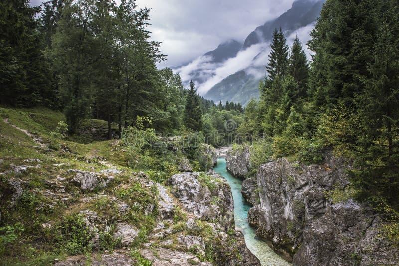 Flod och berg närliggande Bovec i Slovenien royaltyfri fotografi