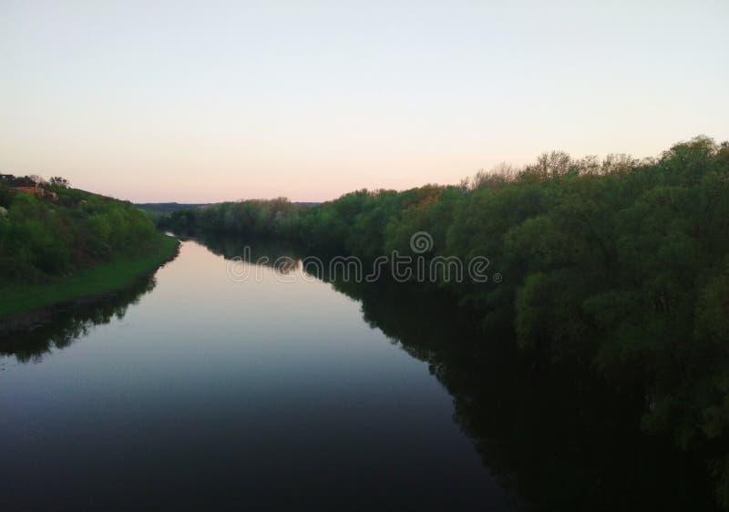 Flod och skog arkivbild