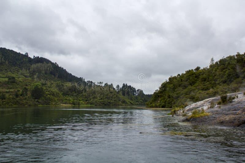 Flod och skog som omger, mäktigt landskap arkivfoto