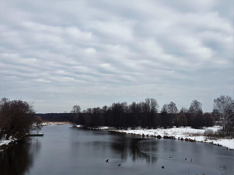 Flod och snö på bankerna med träd mot en klar himmel arkivbilder