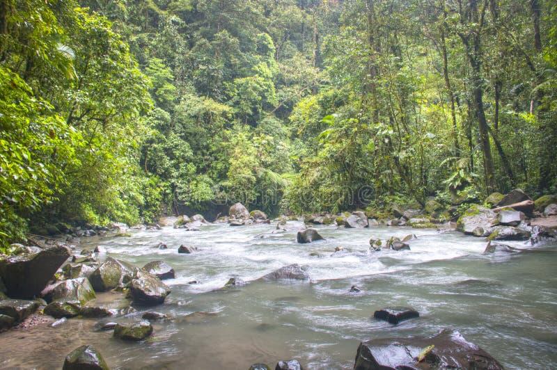 Flod på den LaFortuna vattenfallet i den Arenal nationalparken, Costa Rica arkivbilder