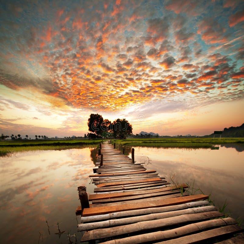 Flod på solnedgång arkivbild