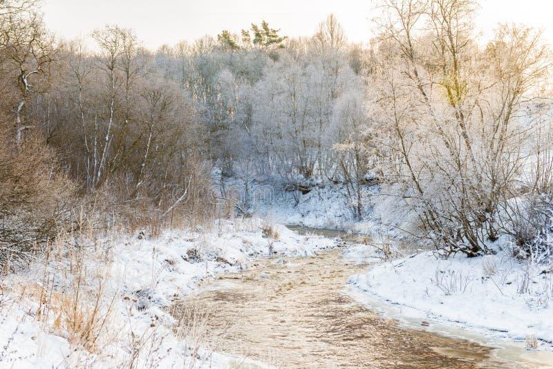 Flod på vintertid arkivfoto