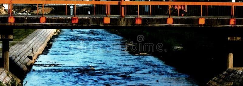 Flod som flödar till och med staden royaltyfria bilder