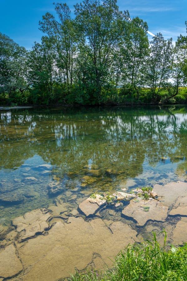 Flod som kan ses botten arkivbilder