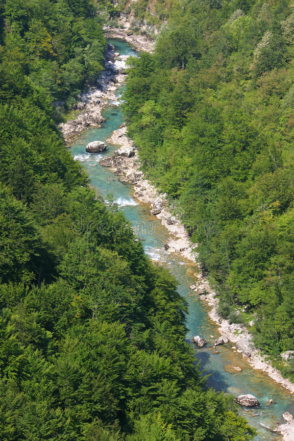 flod tara royaltyfria bilder