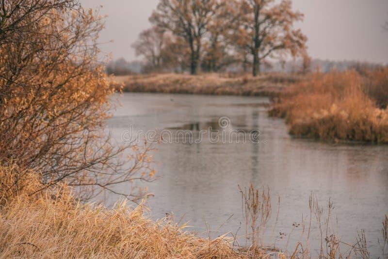 Flod tidigt på morgonen Den första frosten i sen höst arkivbilder