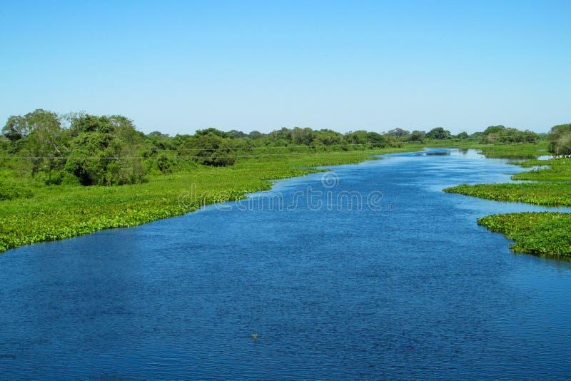 Flod Uruguay för blått vatten i Brasilien arkivfoto