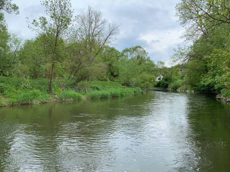Flod vår i Ardennesen Belgien royaltyfri fotografi