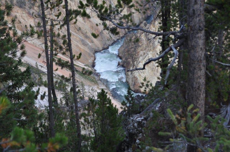 flod yellowstone arkivbild