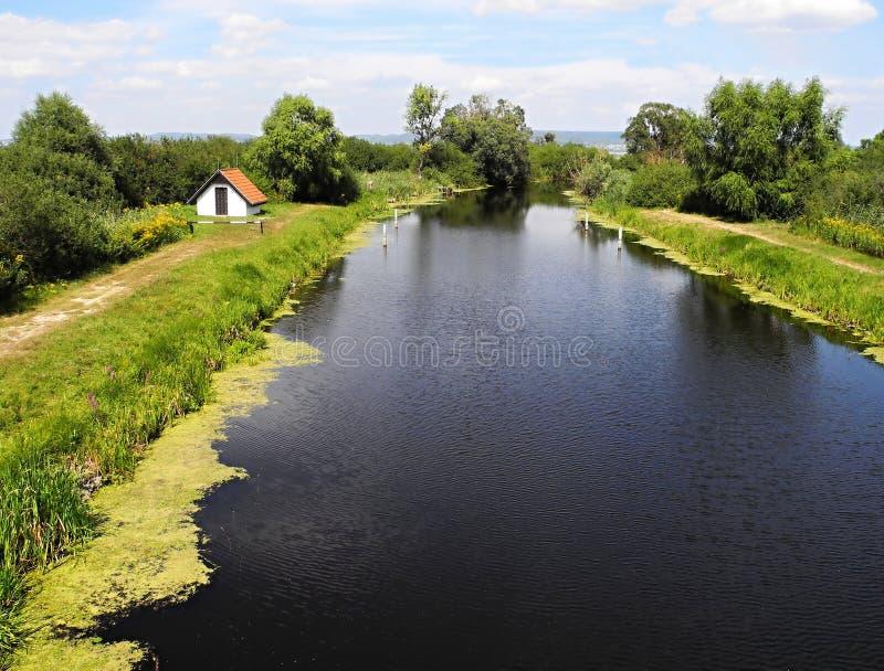 Flod Zala i Ungern royaltyfri bild
