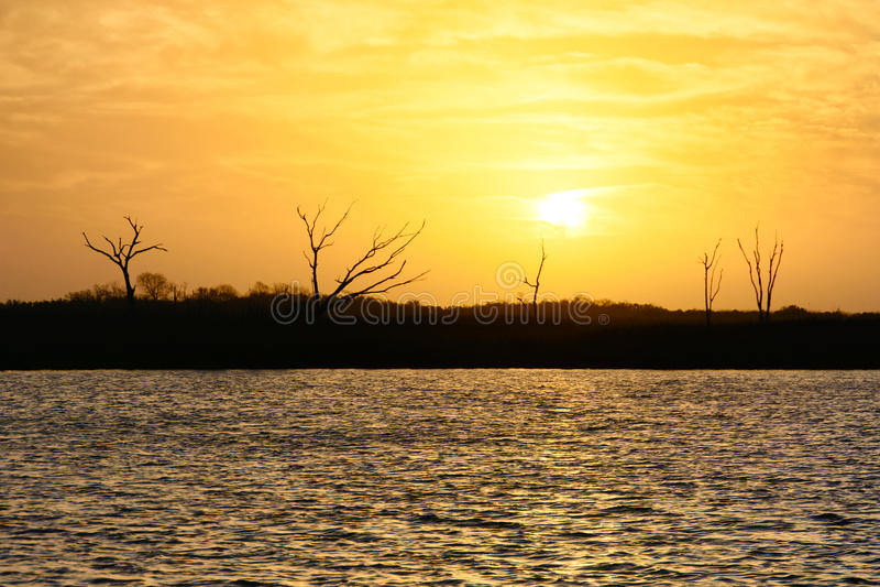 Flodarm Lafourche, Louisiana arkivbilder