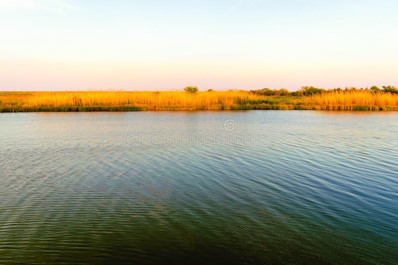 Flodarm Lafourche, Louisiana arkivfoton