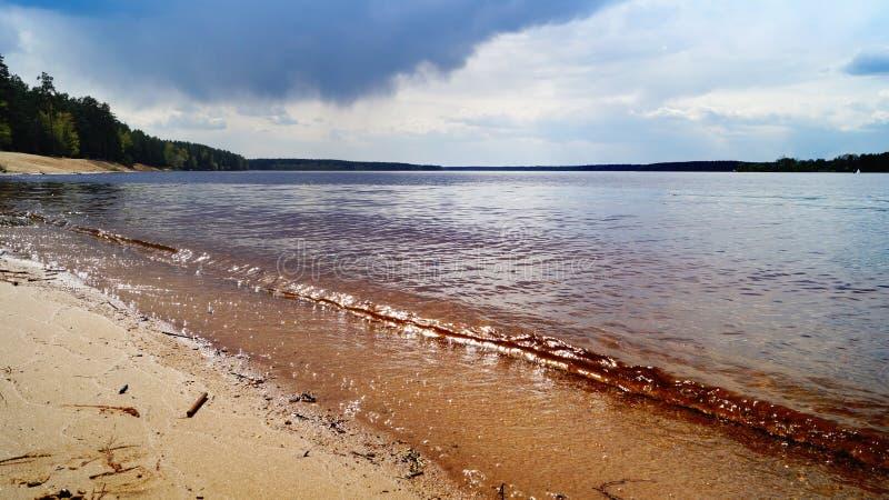 Flodbank på sommardag arkivbild