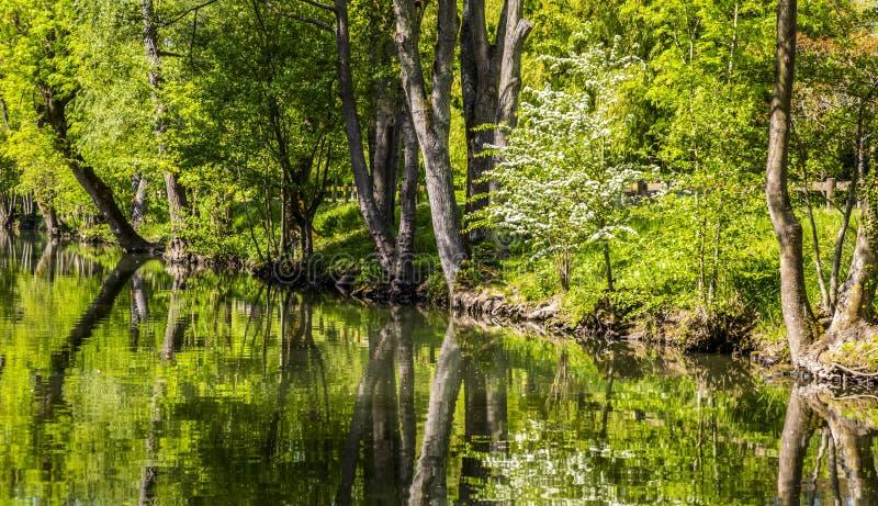 Floden Eure royaltyfri foto