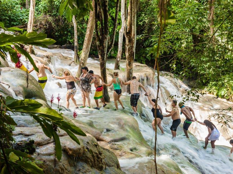 Floden för Dunn ` s faller i Jamaica royaltyfri bild