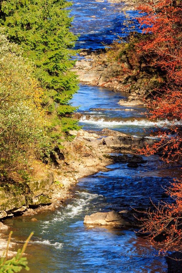 Floden flödar förbi den steniga kusten nära höstbergskogen arkivfoto