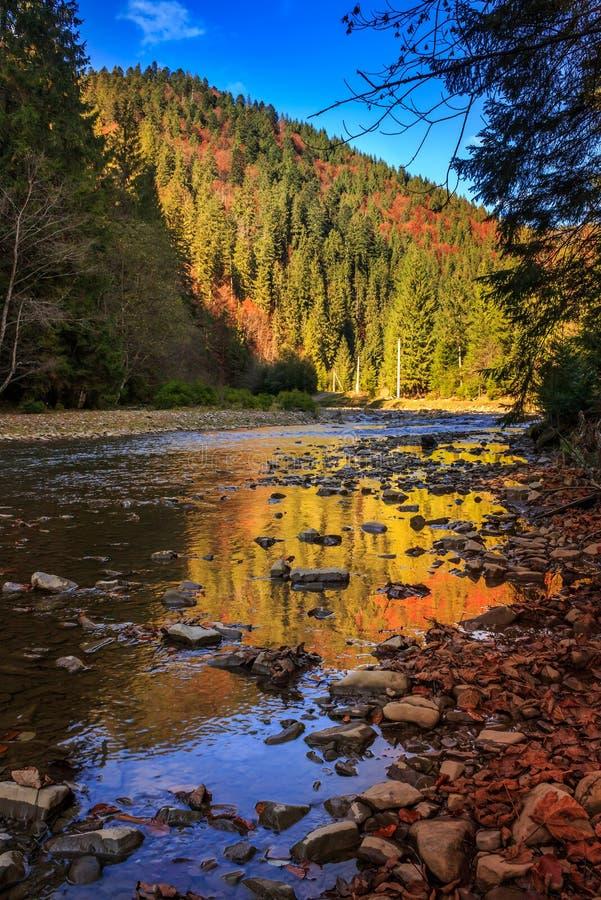 Floden flödar förbi den steniga kusten nära höstbergskogen royaltyfria bilder