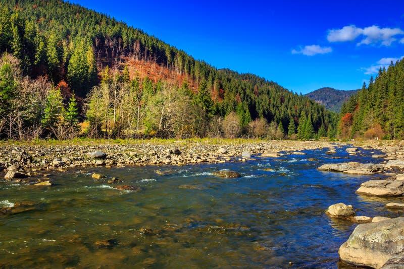 Floden flödar förbi den steniga kusten nära höstbergskogen royaltyfria foton